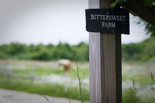 Bittersweetfarm_002